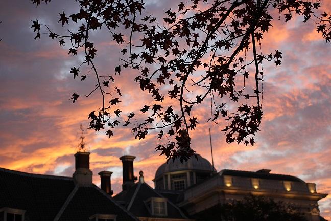 紅葉と秋の夕暮れの空の画像