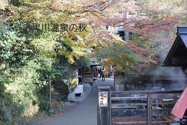 湯布院の温泉宿の写真画像