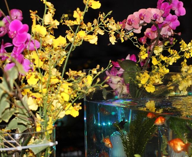 水槽の中の金魚と欄の花の写真