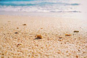 海の砂浜の写真