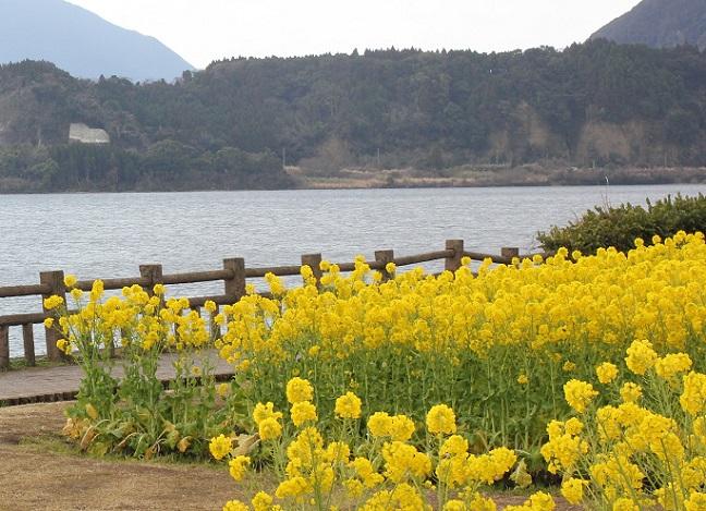池田来湖の写真