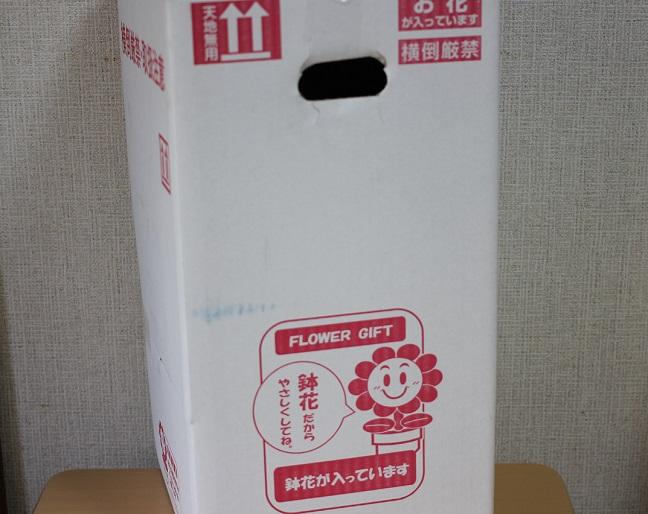 バラが入った箱の写真