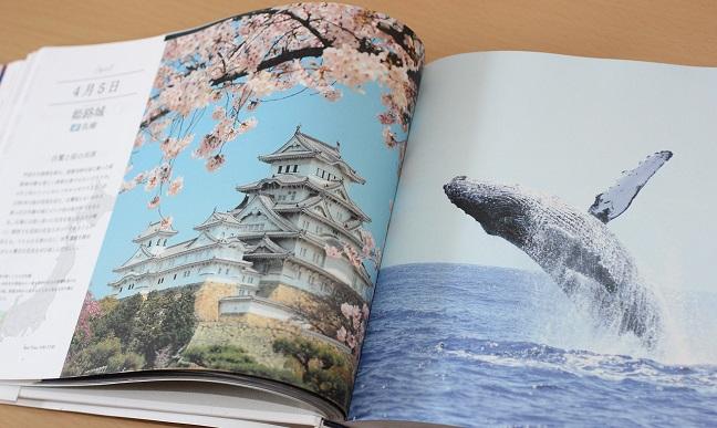 本の紹介 お城の写真