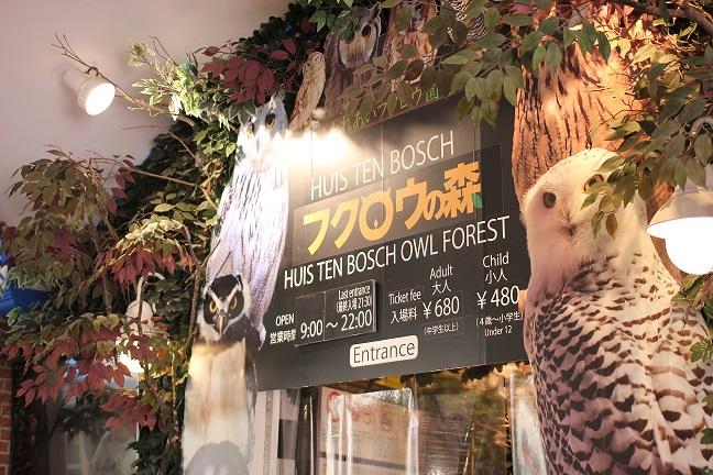 フクロウの森の外観写真