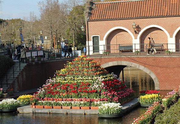 水路の中にあるチューリップの花壇の写真
