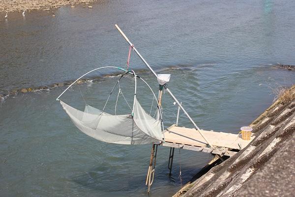 シラウオ漁の写真