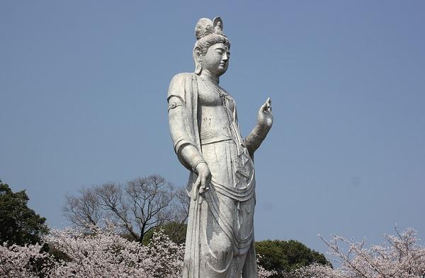 聖観音菩薩像と桜の写真