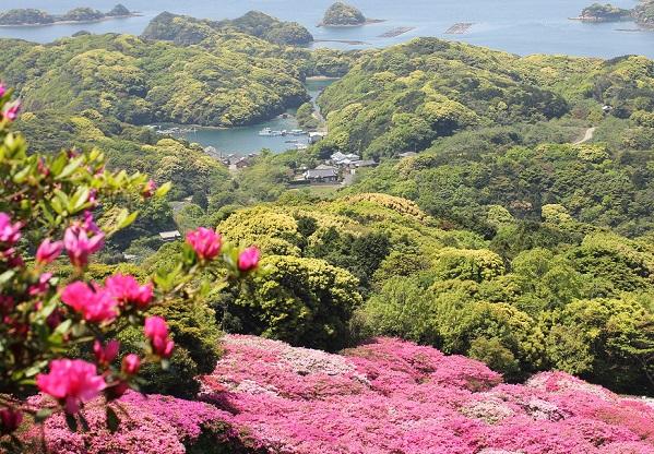 長串山、北九十九島とツツジの写真