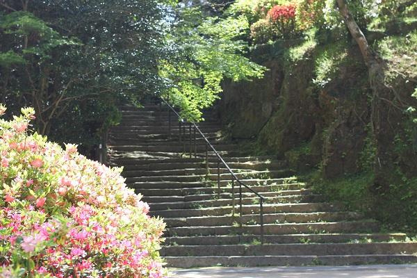 山へ上る階段の写真