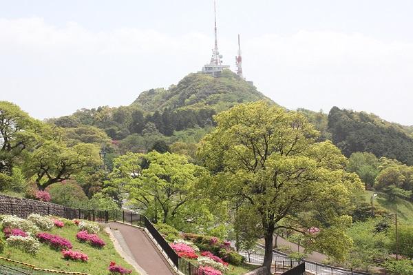 稲佐山の展望台とツツジの写真