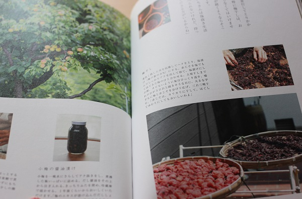 梅干しの作り方の本の写真