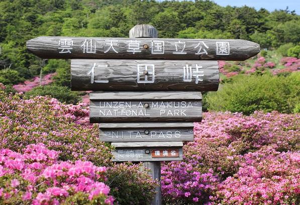 仁田峠の木の看板の写真