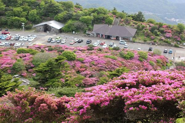 上から見た仁田峠の写真