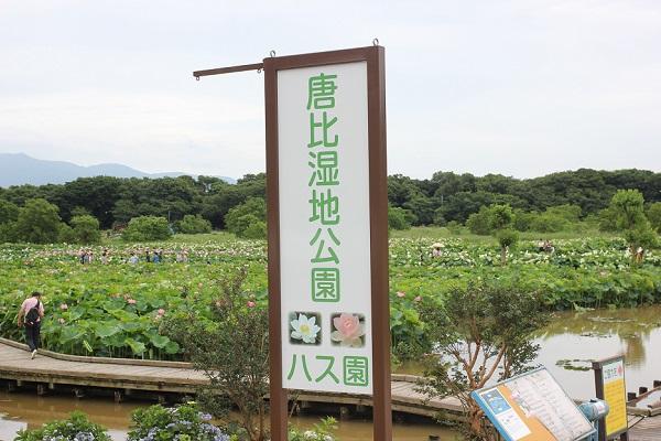 唐比湿地公園の看板の写真