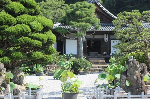 満月寺の外観、ハスの花と仁王像の写真