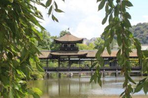 平安神宮の池と木、建物の写真