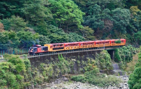 嵯峨野 トロッコ列車の写真