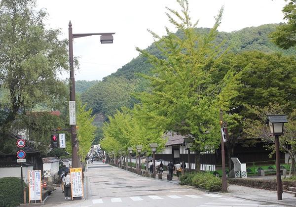 殿町通りの写真