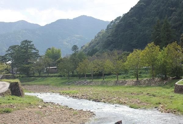 津和野川の風景写真