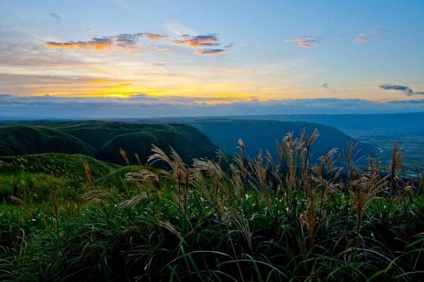 大観峰の展望とススキの写真