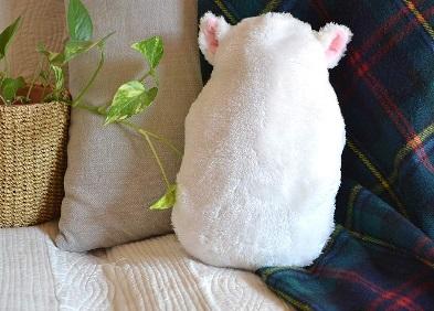 シリコン ふわふわ猫の湯たんぽの画像