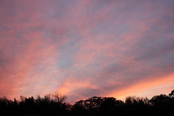 後楽園の夕焼けの空の写真