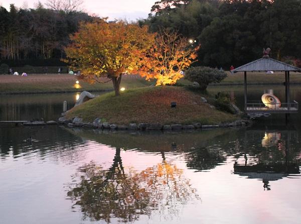 御野島、楓のライトアップが美しい写真