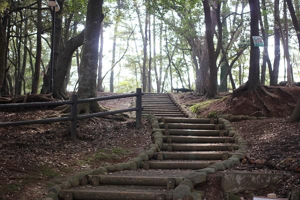 玖島崎キャンプ場への階段の様子の写真