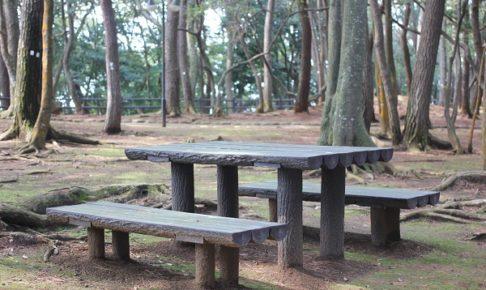 玖島崎キャンプ場のベンチ、テーブルとイスの写真