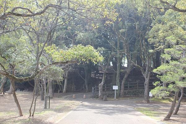 玖島崎キャンプ場の入り口の写真