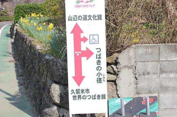 つばきの小径への案内看板の写真