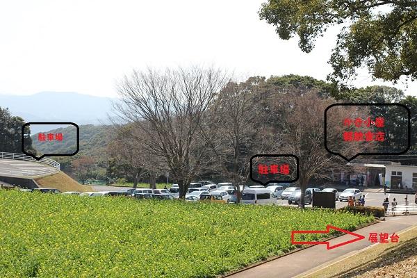 展海峰の菜の花畑、駐車場、牡蠣小屋、食事処、展望台への案内の写真