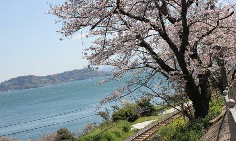 大村湾の海と線路、桜の写真