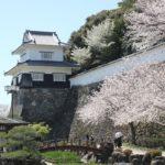 大村公園の桜の写真