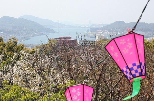 立山公園展望台から長崎港と女神大橋の写真
