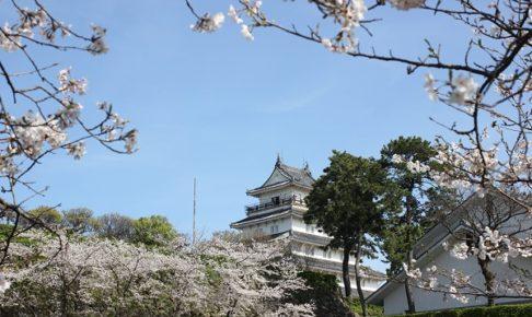 島原城と桜の写真