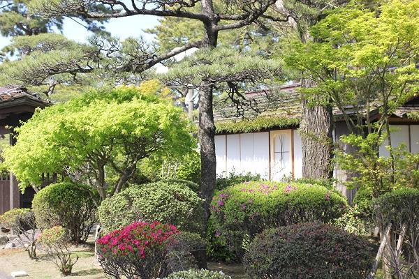 島原城の御馬見所と庭の写真