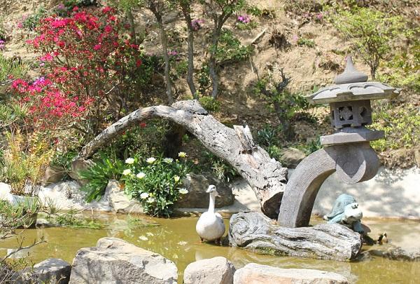 Run.らん.ランの和風手作り庭園の池の写真