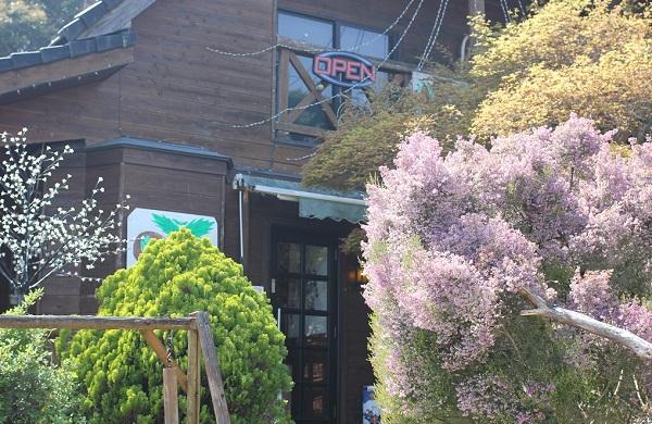 ハーブ&レストラン喫茶 Run.らん.ランの外観写真