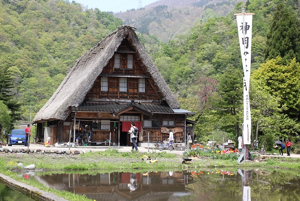 山を背景とした菅沼合掌造りお土産屋さんと水を張った田んぼの写真