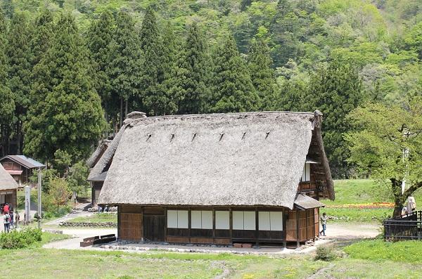 菅沼合掌造り、山を背景としたほのぼのとした合掌造りの家の写真