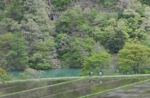 菅沼合掌造り集落の水を張った田んぼと川、山の様子の写真