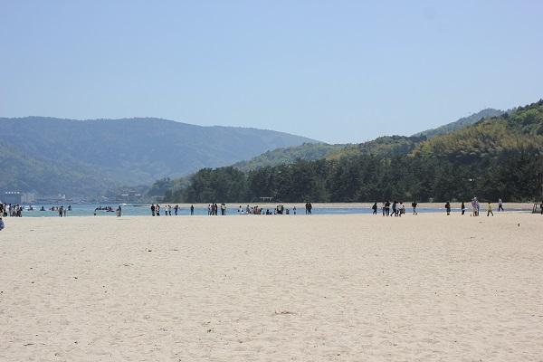 天橋立、山を背景とした美しい白い砂浜がある海の写真