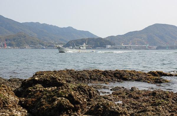 鼠島の磯の様子の写真、船と香焼方面