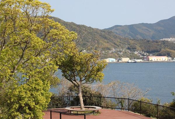 ローケーションが良い鼠島公園、海と街の景色写真