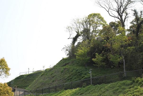 鼠島公園への上り道の写真
