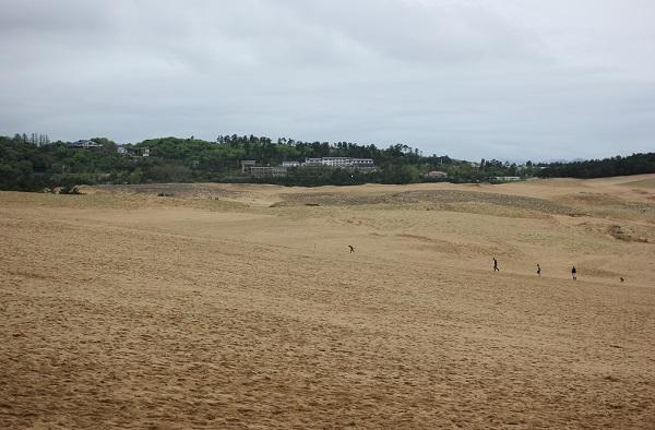 鳥取砂丘、砂丘と歩く人、木々と建物の写真