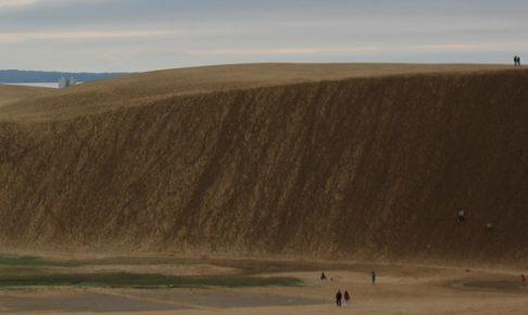 迫力がある鳥取砂丘の写真