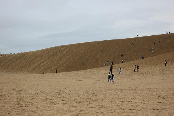 鳥取砂丘、馬の背に上がる人々の写真