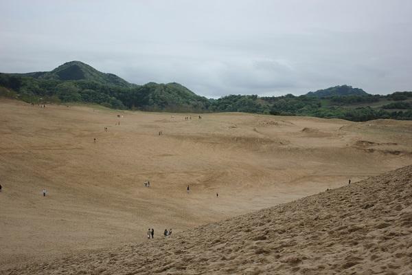 鳥取砂丘、緑の山を背景とした砂丘の様子の写真